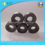 専門の技術の亜鉄酸塩の磁石/異方性焼結させたMultipole亜鉄酸塩のリング