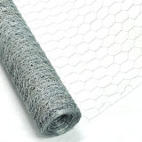 中国の製造業者の製造者25mmの穴によって電流を通される六角形の金網 (CW)
