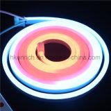 RVB encaissant la lumière au néon de câble de DEL pour l'étalage et la publicité