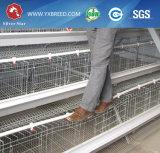La maquinaria de la avicultura de la jaula del pollo de la capa trabaja a máquina superventas en África