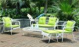 Présidence de jardin de meubles de rotin et meubles en osier de loisirs de Tableau (D530 ; S230)
