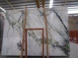 De Jade van de Orchidee van de binnenhuisarchitectuur poetste Groen Marmer op