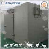 Проекты комнаты холодильных установок Xinyue малые с 1982