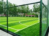 Eco-friendly Zona de juegos Mini Fútbol campo de fútbol de hierba artificial (M50)