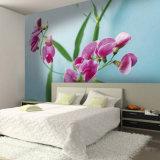 Impressão de alta resolução das pinturas murais do envoltório da construção dos gráficos do ambiente