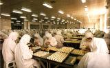 Desinfectante industrial del aire de la máquina del ozono de la fábrica 40g 50g del alimento