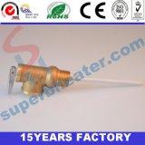Válvula de descarga de la temperatura y de presión