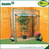 Serre chaude pliable en plastique de protection de jardin d'Onlylife pour des fleurs et des légumes
