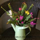 Tipos naturais das flores artificiais dos Succulents do toque de potenciômetros do jardim