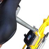 ライト級選手20インチのFoldable電気バイク(RSEB-441)