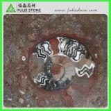 Mármol de mármol fósil rojo de Brown de la losa del nuevo océano jurásico