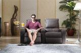 Sofá de la sala de estar con el sofá moderno del cuero genuino fijado (800)