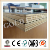 (9mm-21mm) A película concreta de Brown do molde da madeira enfrentou a madeira compensada