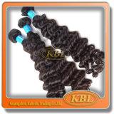 Cheveux Humains Non-traités Brésiliens/péruviens de Sale100% Chaud de /Indian (KBL-BH-DW)