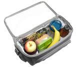 Sacos quentes do refrigerador das vendas com grande capacidade para o piquenique