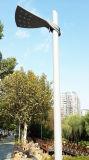 [لد] [كمه] [70و] [150و] فولاذ [بول] حديقة مصباح