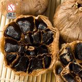 よい好みによって発酵させる黒いニンニク6つのCmの球根(12bulb/bag)
