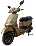 [ك] يوافق درّاجة ناريّة كهربائيّة مع [س] شهادة