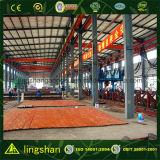 Armazém industrial da construção de aço vertido (LS-SS-102)