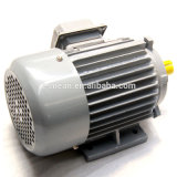 220V Y Series trifásico AC Electric Motor