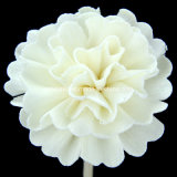 Flor de madera de Sola del clavel (SF044)