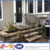 간단한 Classical Residential Wrought Iron Fence (dhfence-29)
