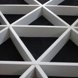 تصميم فنيّة من شبكة سقف, سقف زخرفيّة [أبّلس] إلى [مترو ستأيشن], مطار