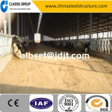 Exploração agrícola de aço da vaca da estrutura da configuração do conjunto fácil com projeto