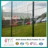 PVC покрыл двойной загородку/панель ячеистой сети ячеистой сети сваренные загородкой в датчике 6