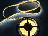 O diodo emissor de luz descasca 14.4W luz de tira do diodo emissor de luz de 5 medidores com 5050 microplaquetas