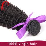 Malaysian Virgin 머리 꼬부라진 직물 머리