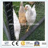 Galvanisierter /PVC-sechseckiger dekorativer Huhn-Maschendraht für Verkauf