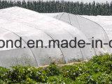 100% 새로운 HDPE 곤충 스크린 또는 반대로 곤충 그물