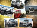 فائقة شاحنة 10 عربة ذو عجلات [480هب] [بيبن] [ف3] جرار شاحنة