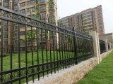 粉の上塗を施してある装飾的な錬鉄のプールの塀