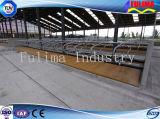 Скотины оборудования дневника фермы подавая Headlock/панель (FLM-F-011)