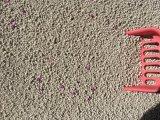 Самое лучшее качество отсутствие песка кота пыли