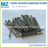 Chiodo comune del collegare del ferro Bwg4-20