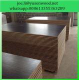 Madera contrachapada del suelo del envase de la madera dura de Iicl para la reparación del envase