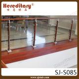 La balaustra di vetro di legno dell'acciaio inossidabile di disegno moderno in scala parte (SJ-S085)