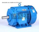moteur électrique asynchrone triphasé de moteur à courant alternatif Du moteur 45kw