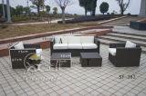 Jogos ao ar livre do sofá, mobília do Rattan do pátio, jogos do sofá do jardim (SF-303)