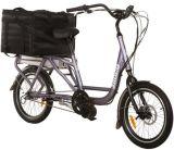 熱い販売法のEn15194証明書が付いている電気貨物バイク配達バイク(JB-TDN0Z)