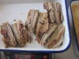 Cavala enlatada na promoção Slsi/peixe enlatado/alimento enlatado