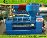 Pressa di olio della vite della soia (6YL-165) con il video funzionante