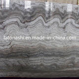 Silver natural Grey Stone Travertine Tile para Flooring, Backsplash, Paver