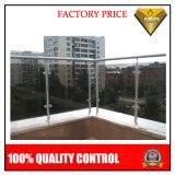 O melhor corrimão do aço inoxidável do preço com experiência no projeto (JBD-B3)