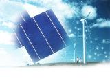 17.4% Risparmio di temi Poly Solar Cell per 150W Solar Panel