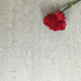 優秀なQuality Double Loading Porcelain FloorおよびWall Tile (300X600mm)