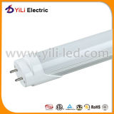UL Approved 0.6m Oval Fluorescent T8 LED Tube/LED Tube Light di TUV